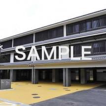 sample-215x215